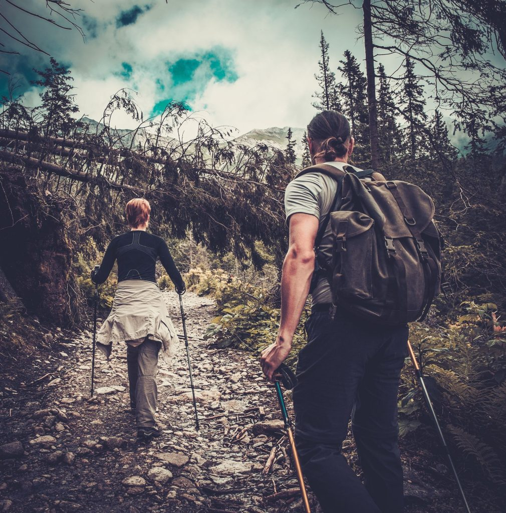 37682336 - couple with hiking poles walking in a forest